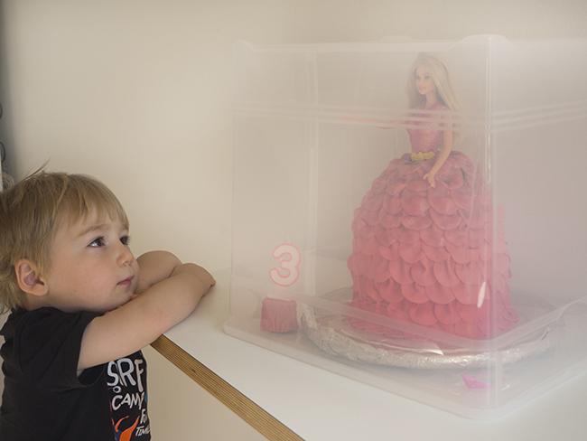 barbie cake transport